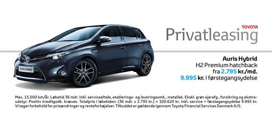 Auris Hybrid H2 Premium