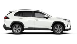 RAV4 Luxury